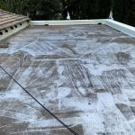 roof painting 2192